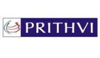 Prithvi Solutions Logo
